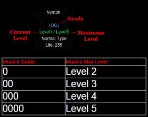 Grade_muun